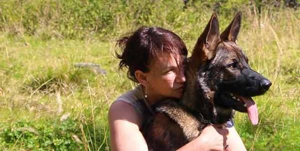 dressage chien berger australien
