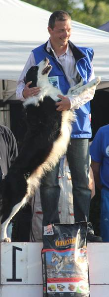 école dressage chien québec