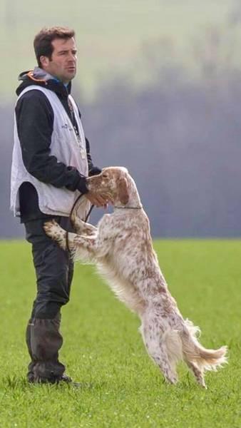 cours de dressage chien de garde