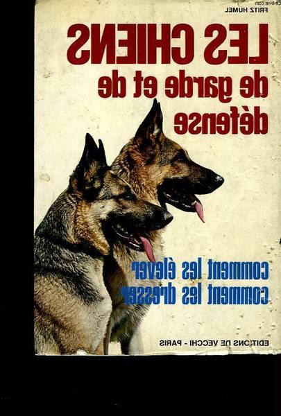dressage chien westhoffen