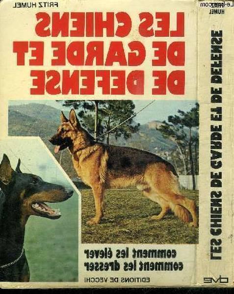 dressage chien darrêt livre