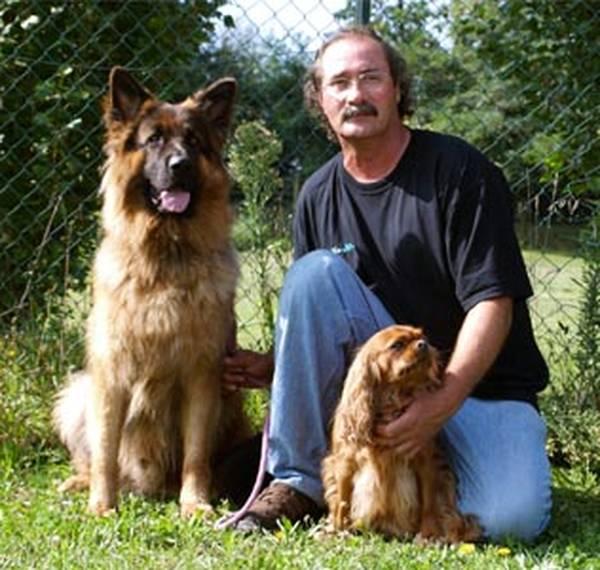 dressage chien darret rhone alpes